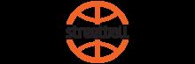 Стритбол (BasketShop ru) - баскетбольный интернет-магазин